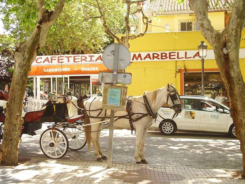 Hire Cars and Taxis in Marbella